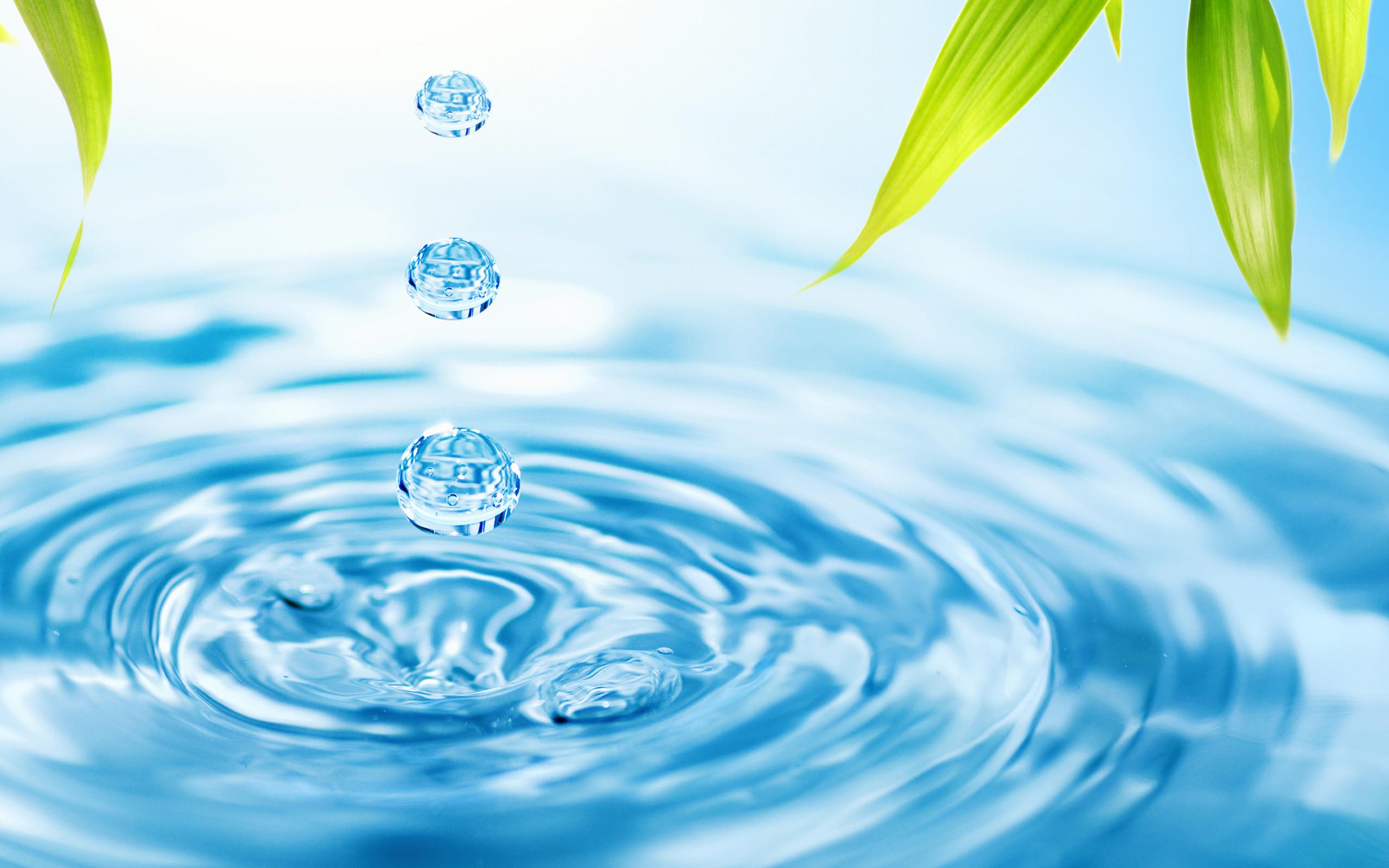 Giấc mơ thấy nước